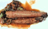 Carrot soft rot