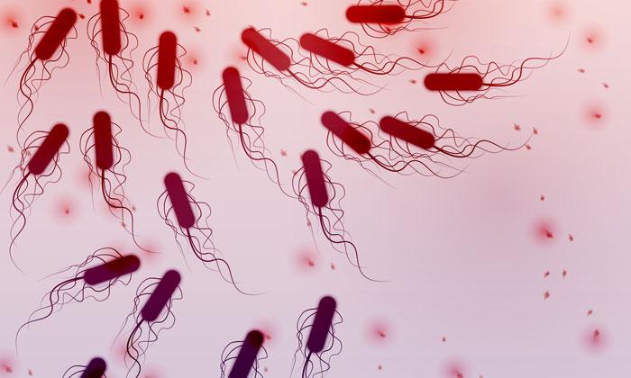 E. coli (https://www.newfoodmagazine.com/news/63687/e-coli-outbreak-us-canada-linked-lettuce/)